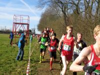 2015_LM_Cross_Rosche_013