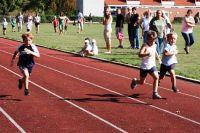 090816_001_HM_vereinssportfest